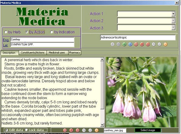 biology dictionary download free software