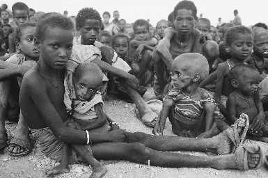 Stop World Hunger!