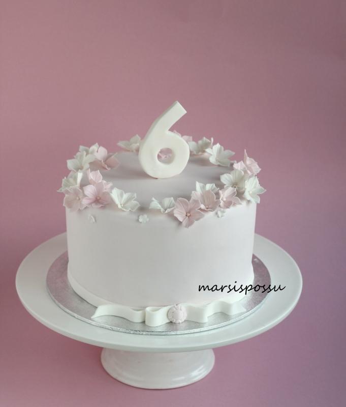 kakku 6-vuotiaalle