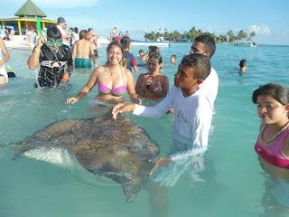 Qué hacer en San Andrés - Nadar con mantarrayas