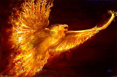 Beyond the world know your mythology creatures phoenix - Photo de phenix ...