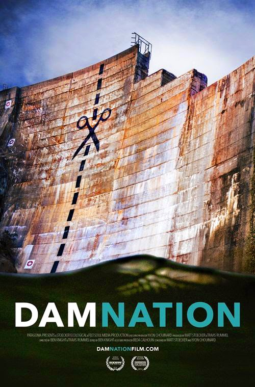 Patagonia's DamNation documentary poster