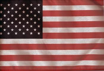US FLAG-50 STARS