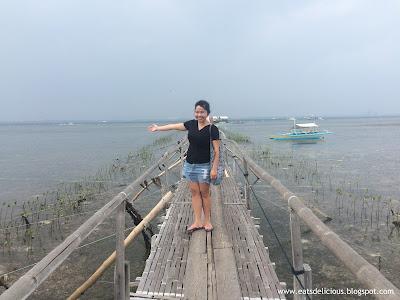 Olango Island Cebu Wildlife Sanctuary 2