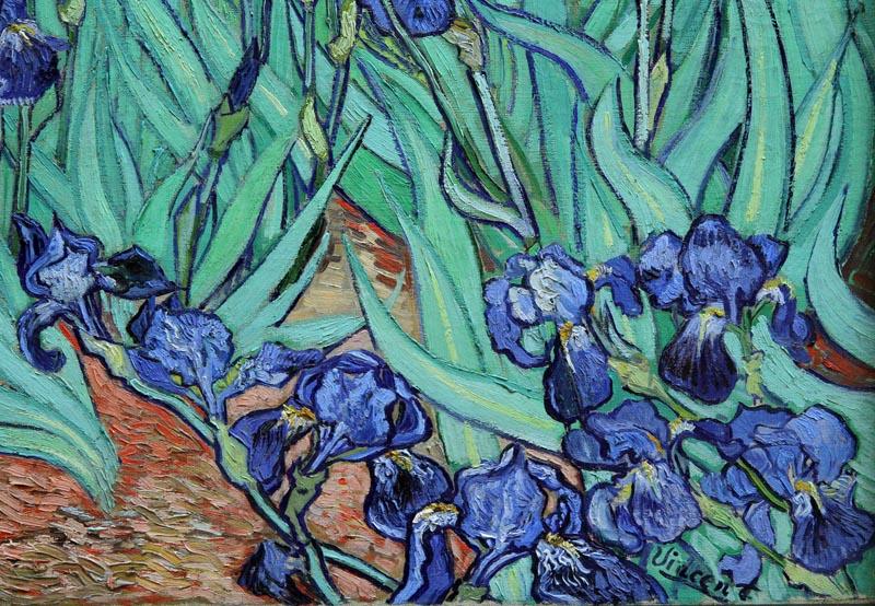 Van Gogh Irises Getty   Van Gogh Irises Getty