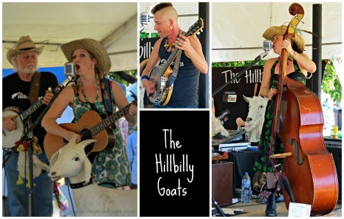 Australian Music: The Hillbilly Goats