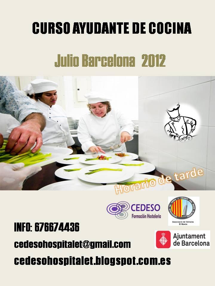 Lunes 16 curso de ayudante cocina cedeso for Ayudante cocina