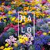 Halo | Coroas e Bandoletes de Flores