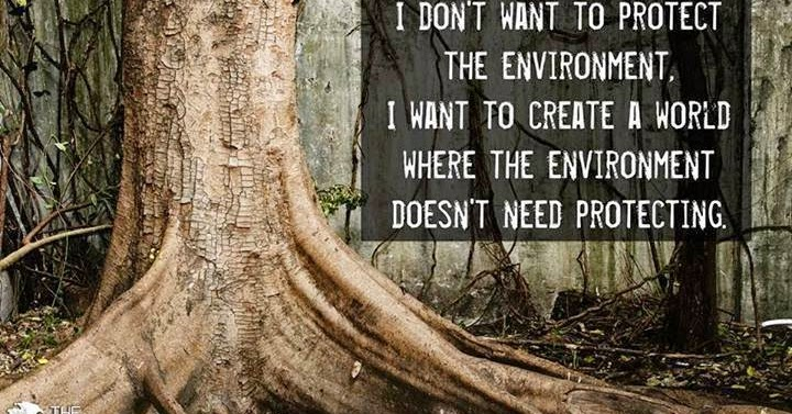 the need for protecting the environment Ways in which businesses protect the environment 1 business owners must adhere to the various legislation set out by government and reduce pollution in rivers, seas and the atmosphere.