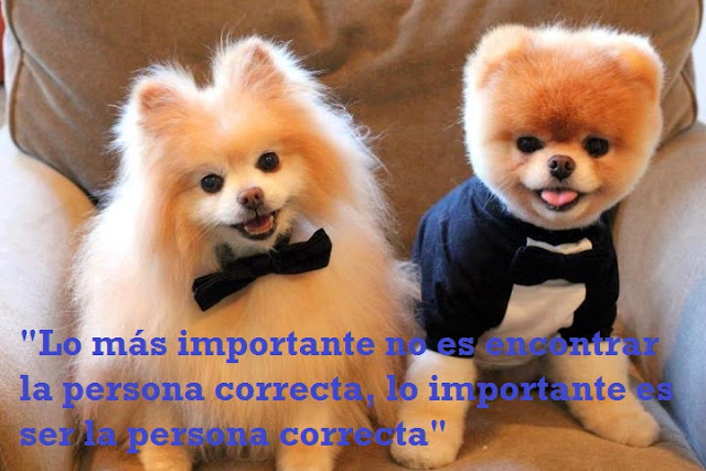 LO MAS IMPORTANTE NO ES ENCONTRAR LA PERSONA CORRECTA LO IMPORTANTE ES SER LA PERSONA CORRECTA