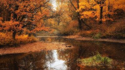 Встречаю Осень