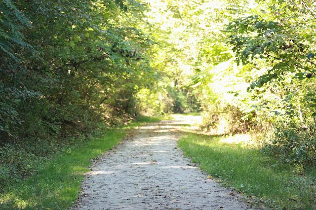 Bike trail in the fall