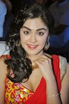 Adah Sharma Photos at SOS Audio Launch