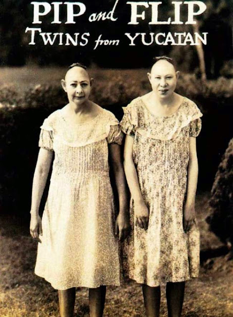 Conheça as gêmeas de Yucatan
