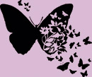 """Проект """"Полет бабочки"""""""