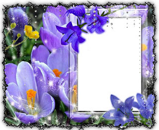free beautiful photo frames