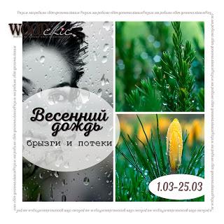 """Задание №33 """"Весенний дождь"""" с ОЭ до 25/03"""