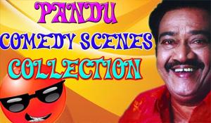Pandu Comedy Scenes || Tamil Comedy Scenes