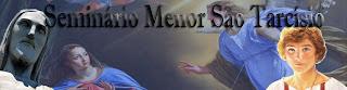 http://seminariomenorsaotarcisio.blogspot.com.br/