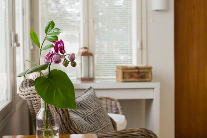 rento leikkokimppu viherkasvista ja orkideasta
