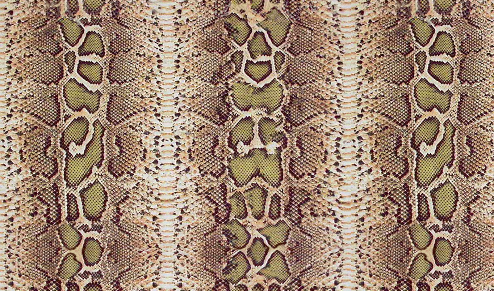 Invaluable image inside snake printable