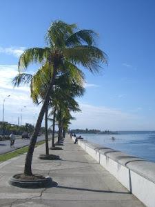 Fernandina de Jagua