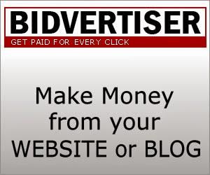 bidvertiser-make money online-by-your-blog-or website [Techzilla Firefox]