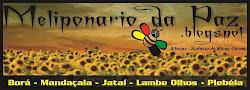 Salvem nossas abelhas !!!!