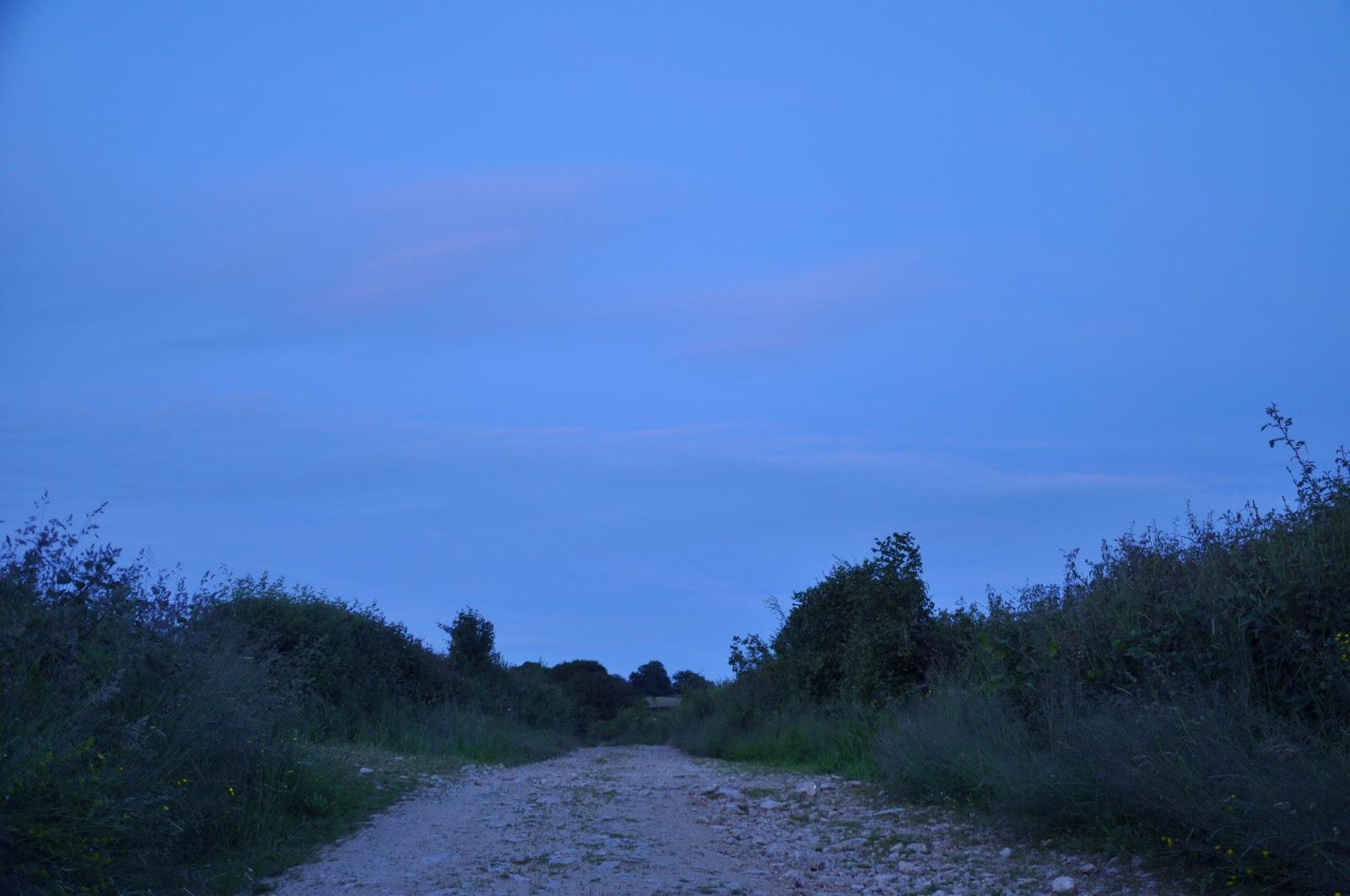 Par les soirs bleu