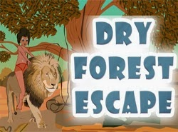 TopEscapeGames Dry Forest Escape