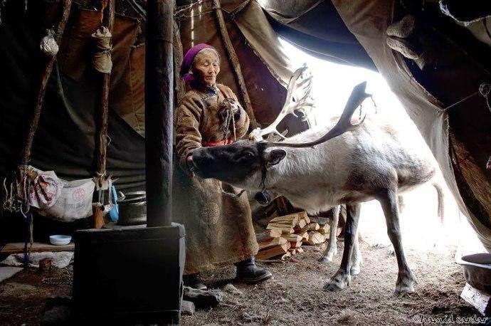 Kehidupan Penduduk Mongolia