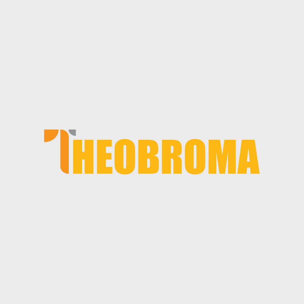 Karir Lampung di CV. Theobroma
