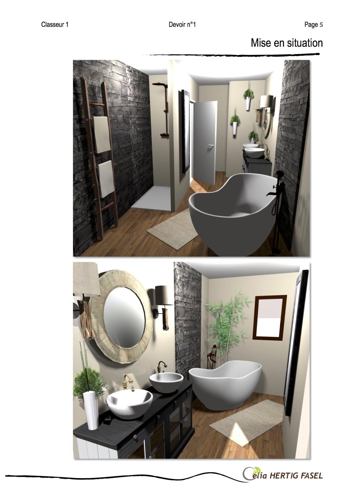 Projet d co une salle de bain metamorphoses for Projet salle de bain