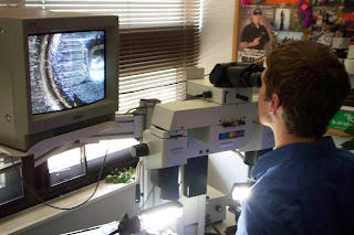 The comparison microscope allows Callahan to compare images side by side.