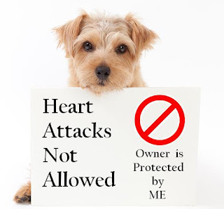 dogs reduce heart attack risk