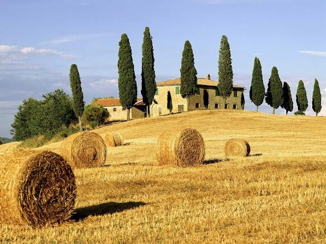 Imag Lugar Italia.jpg