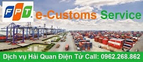 FPT e-Customs