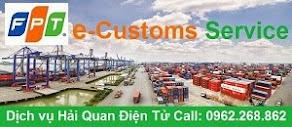FPT e-Customs