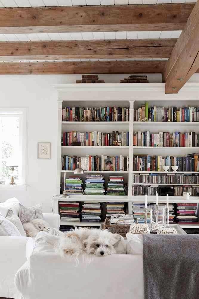 BIały regał w białym salonie z kolorowymi grzbietami książek na białej sofie leży biały piesek