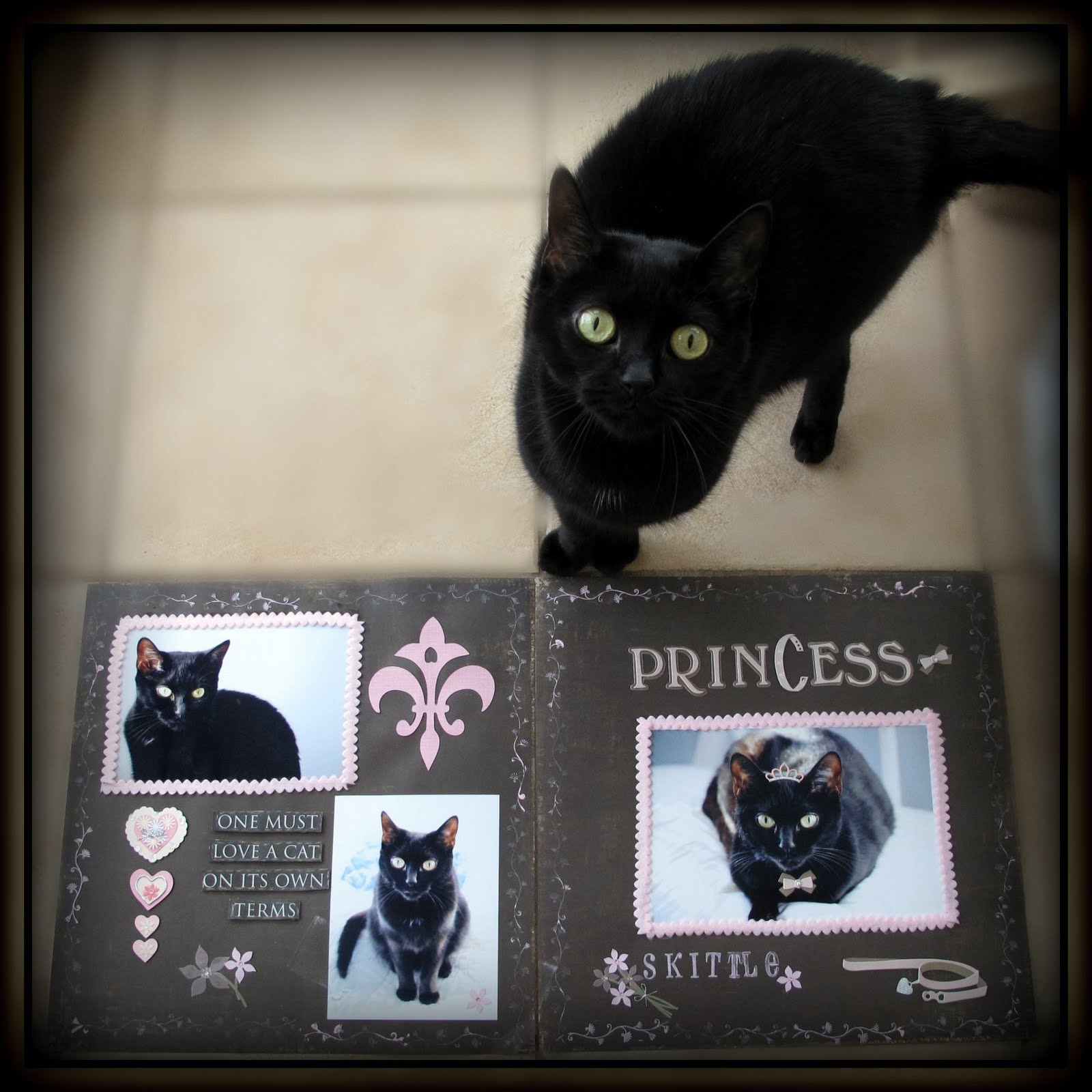 Kimberlys Crafty Creations One Must Love A Cat Two Page