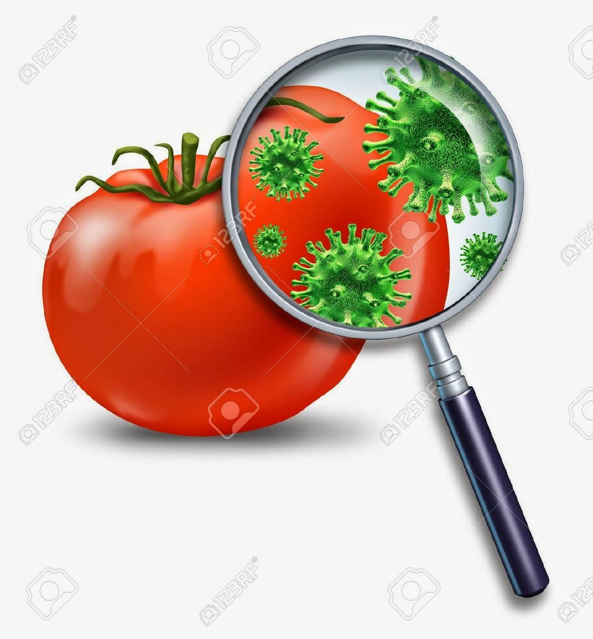 Alternativas para cuidar el medio ambiente contaminaci n de los alimentos - Fuentes de contaminacion de los alimentos ...