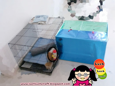 Guinea pig cheap cage