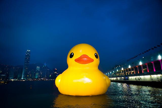 INFLATABLE RUBBER DUCK SAILS INTO HONGKONG