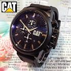 Cat Chrono 04