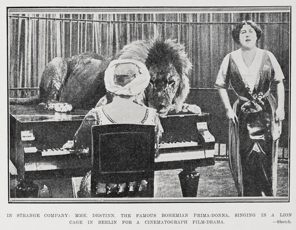 Australasian Zoo & Circus Animals Historical Journal: December 2011