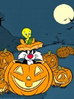 Halloweenbild Katze