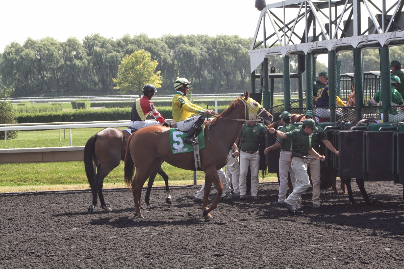 Horses at Gate of Arlington Park