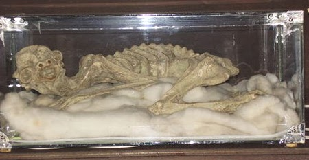 Mummies of Supernatural Creatures Exist in Japan