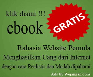 Ebook Gratis Rahasia Website Pemula (RWP)