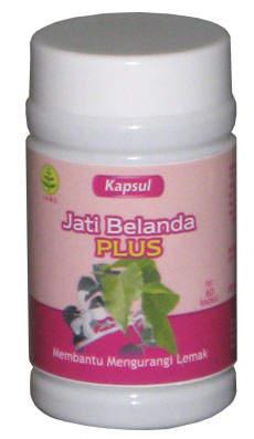 jual Herbal Jati Belanda | Kapsul Jati Belanda | Herbal ...